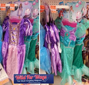 disney princess_Panorama5w