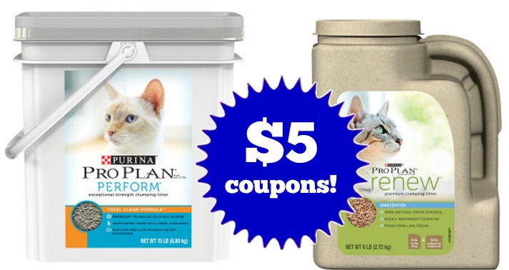 Pro plan coupons